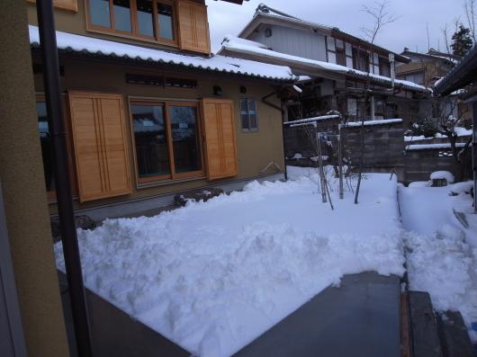 snow_110201-1.jpg
