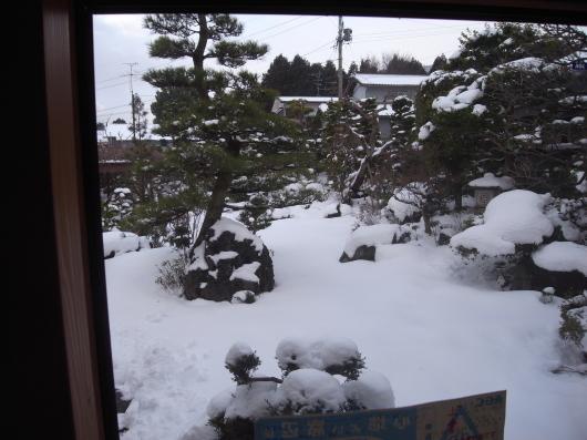 snow_110201.jpg